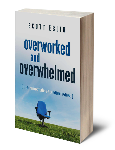 Book by Scott Eblin